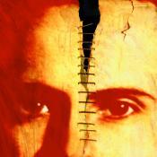 Embodied Mind / Damaged Brain
